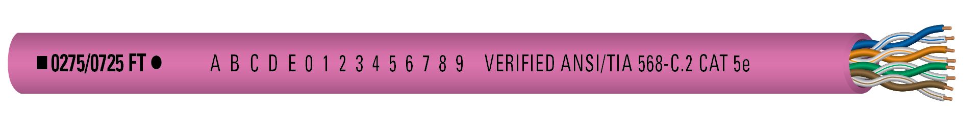 5556170